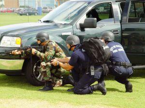 swat-1-585835-m.jpg